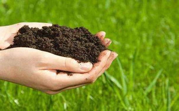 排污单位自行监测技术指南 磷肥、钾肥、复混肥料、有机肥料和微生物肥料